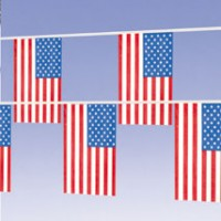 usflagpennants-pic