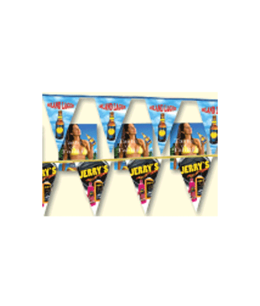 Custom Pennants – Vinyl Full Color – Call For Quote